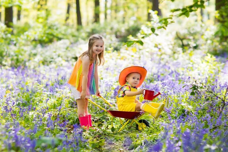 Creating an Easter Fairy Garden
