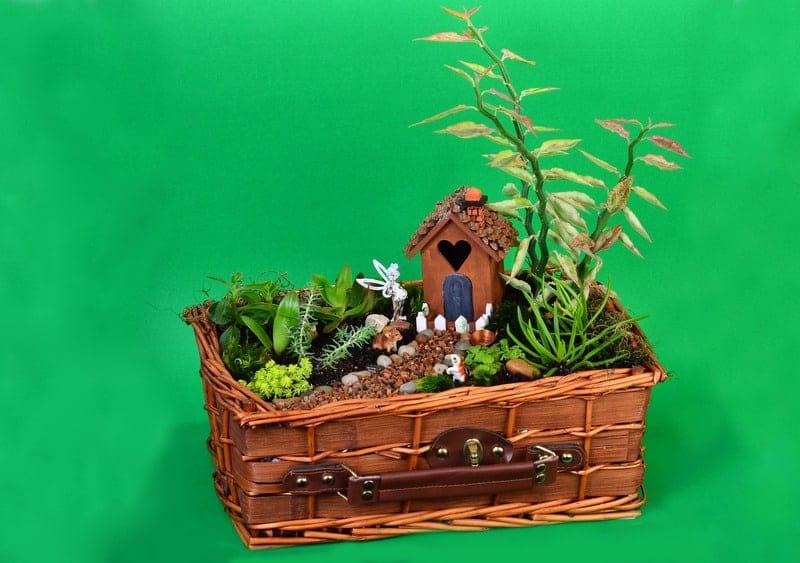 Imaginative Fairy Garden Planters