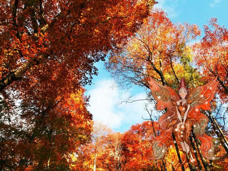 Autumn Fairy Garden