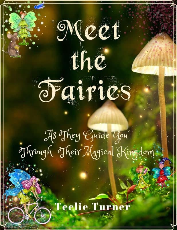 Meet The Fairy