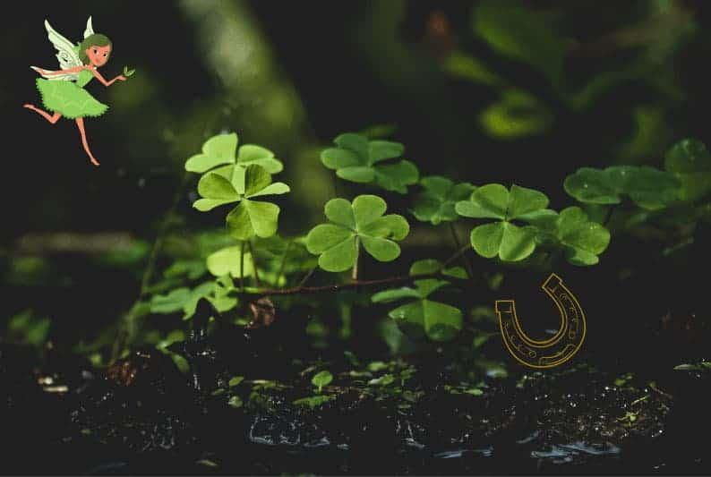 good lucks charm fairy garden
