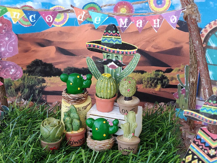 assorted adorable cactus, dollhouse